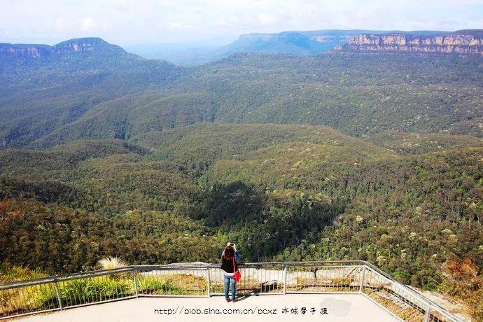 """澳大利亚大火蓝山变""""黑山"""",太让人痛心了。想起八年前去过的蓝山罗拉小镇"""