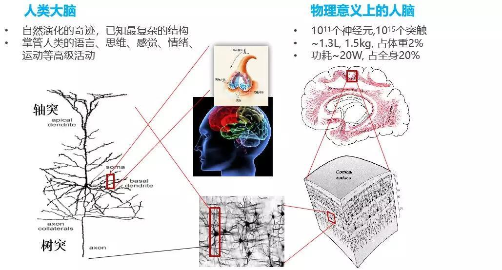 装了类人脑系统的人,还能算人吗?