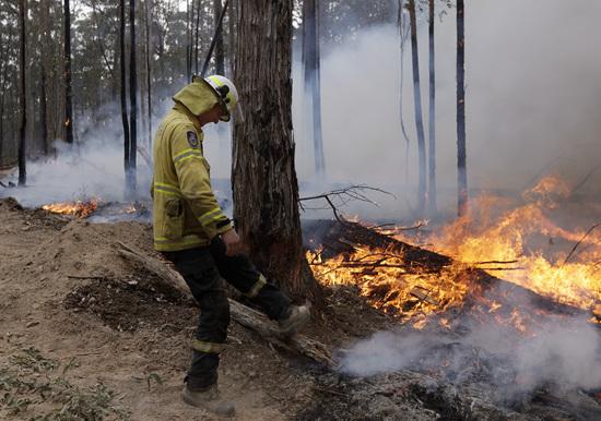 澳大利亚大火是谁的锅:政府、气候变化,还是之前烧得不够?