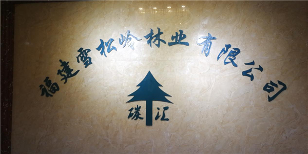 """【""""雪松岭林业""""成为福建电视台2020""""品牌福建""""新春贺岁互动合作伙伴】图1"""