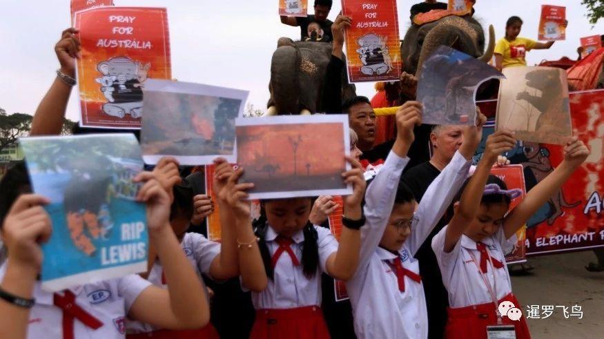 泰国大象与学生为澳洲森林大火和受难动物进行默哀游行