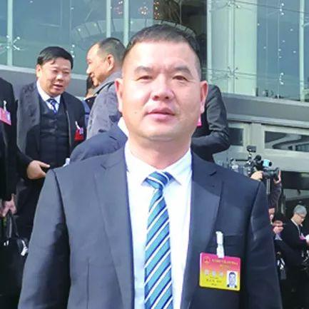 省人大代表:建议设立龙港市高等职业学院!
