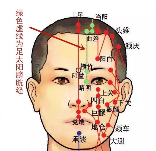 穴位知识   十二经脉·足太阳膀胱经之眉冲穴