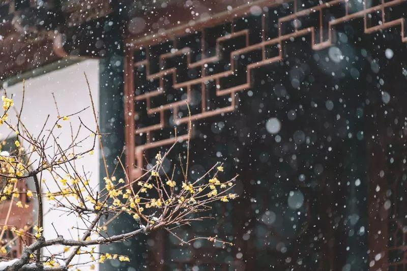 1.18日运|白羊桃花旺盛 金牛得财顺利