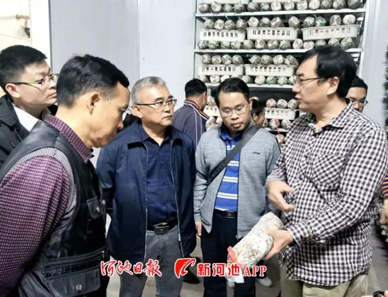 丽水市村集体经济收入总量_丽水市缙云县梅树岙村