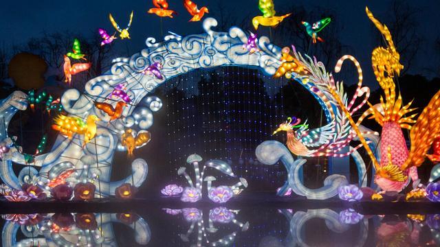首届天府芙蓉园国际灯彩节正式亮灯,成都年世界范儿打造殿堂级光影艺术