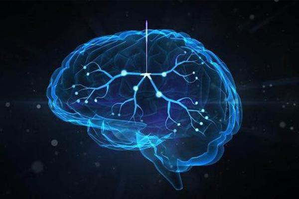 宝宝大脑发育吃什么 怎样促进婴儿脑发育