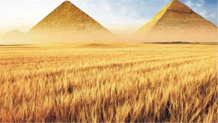 原创            孔明一打仗就缺粮,为何战国七雄打了几百年都不缺粮?