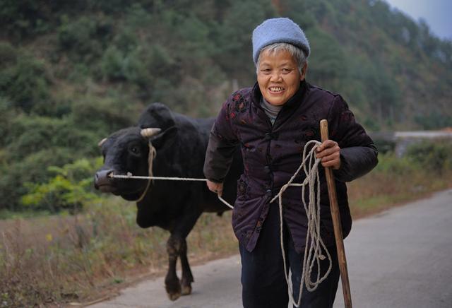 70歲老人:生了場大病后才明白,女兒和兒媳最大的區別