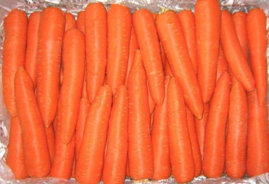 天天吃胡萝卜,可你知道萝卜丝和萝卜片,营养并不一样吗?|