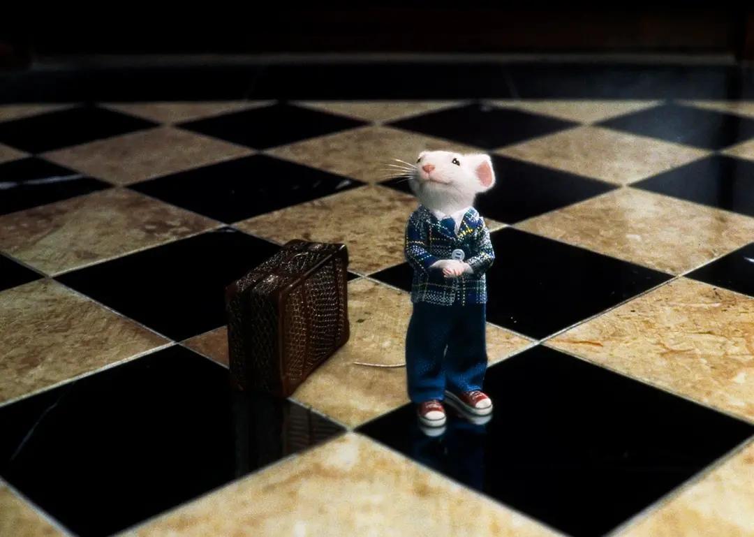 孤单内向的小男孩,古灵精怪的小动物,他们能否成为好朋友?插图(4)