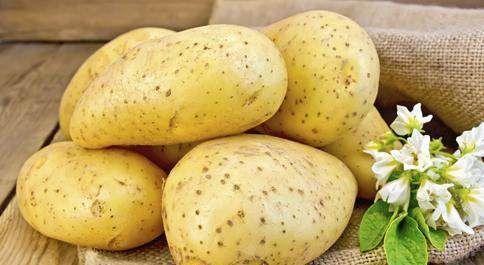 【夏天吃土豆有禁忌,哪些地方要注意,如此搭配影响健康坏身体!】