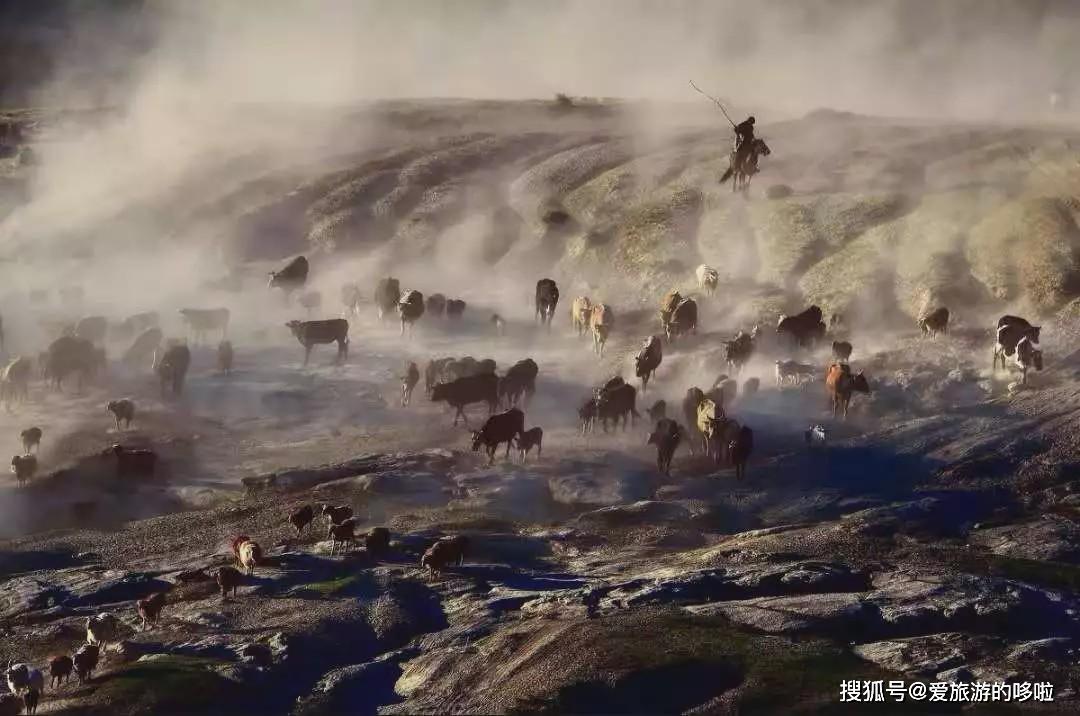 没吃过江南的红烧羊肉,不足以聊南北羊文化!