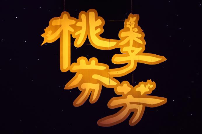 """上市公司名单北京舞蹈学院""""桃李芬芳""""全国青"""