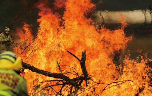 """被山火""""烧到""""的澳大利亚政坛"""