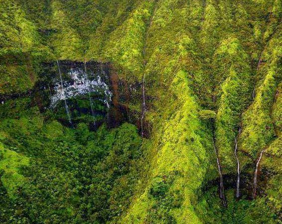 世界上最潮湿的地方,一年约有325天都在下雨,被子都能长蘑菇