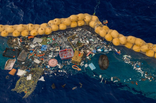 梦见好多蛇海洋垃圾有望清除?荷兰环保组织推