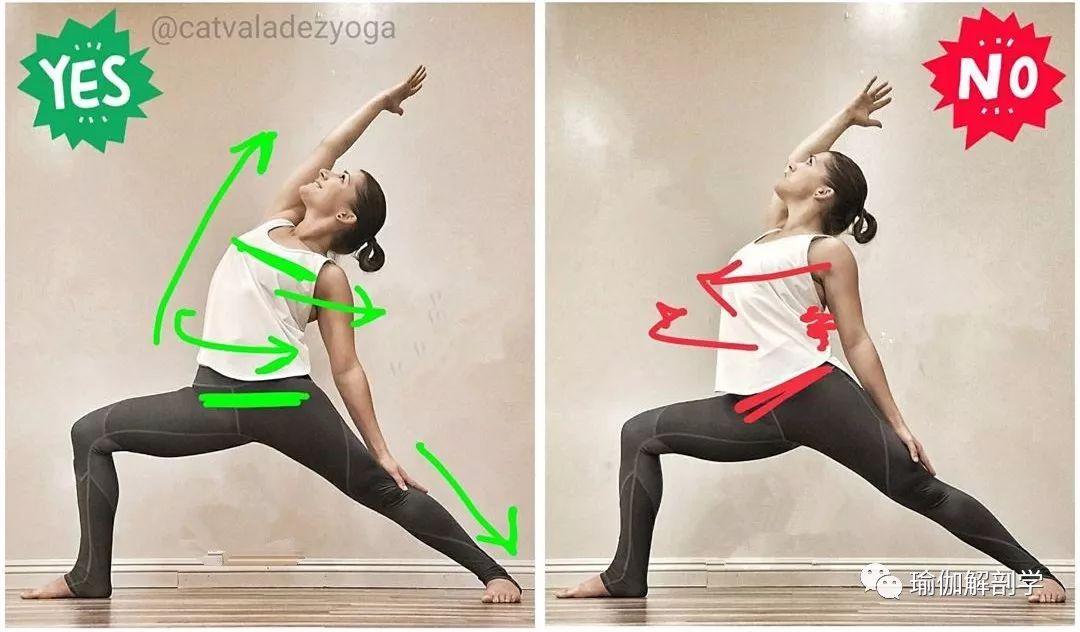 """30个瑜伽体式""""力的走向及正误对比图"""",初学者这样练才有效!"""