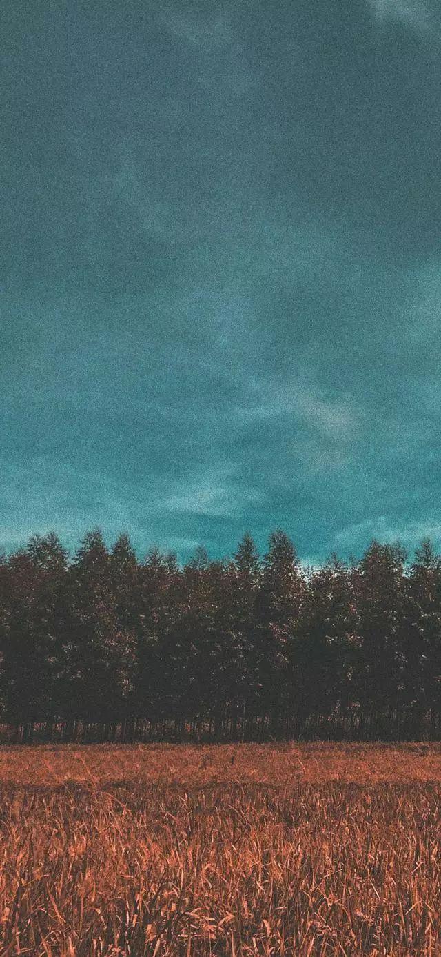 手机壁纸 风景壁纸图片