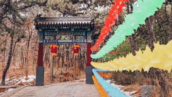 2020春节在北京红螺寺祈福,遇见最红火的新年游园会