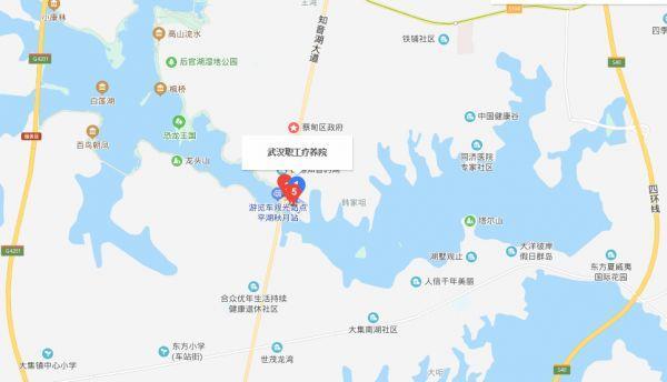 """武汉版""""小汤山医院""""通宵施工中!现场热火朝天!"""