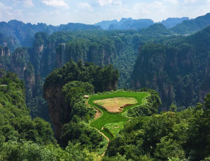 """张家界隐藏一空中田园,位于悬崖峭壁之上,被称为""""最牛耕地"""""""