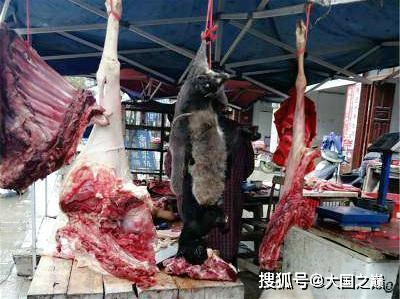 三部門下達鐵令,從源頭嚴格治理,禁止野生動物交易!