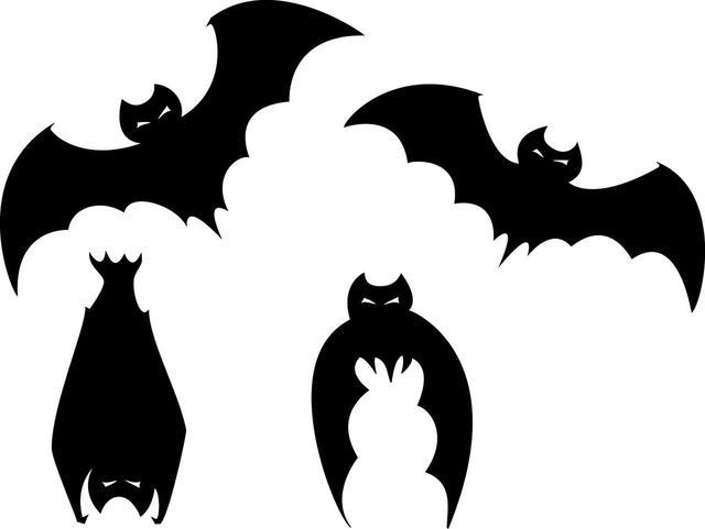 原创辟谣:为了以后避免再次被冠状病毒感染,人类应该让蝙蝠灭绝?
