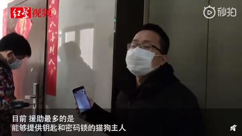 武汉滞留家中宠物救援活动进行中,家中智能摄像头查看宠物状态!