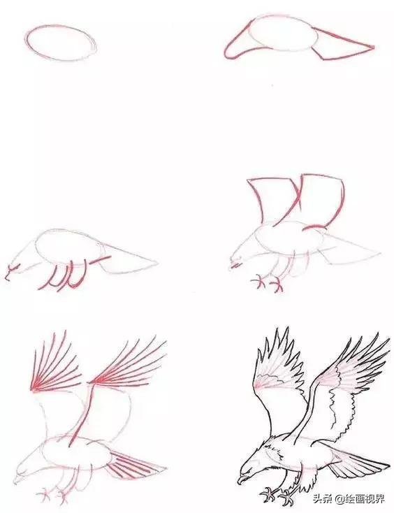 14步画只丧尸,好恐怖~   以上这些都可以完成的话   你很厉害,加点难度   画一些带颜色的花儿   只需9步亲手涂一支玫瑰   或者14步,画一支百合   4步画个小企鹅   5步画个大狮子   6步画一棵树   或者画一只小乌龟   11步画一只萌