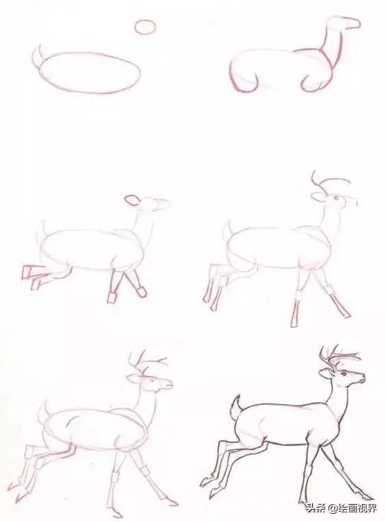 干货 难得一见的30种小动物简笔画,快让你的孩子画起来吧