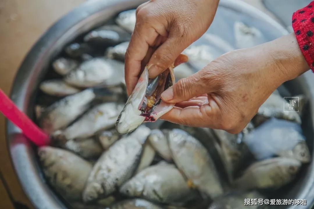 中国驻加纳大使馆:5名中国公民在加纳确诊新冠肺炎其中3人已康复