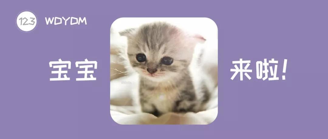 猫对初生婴儿有影响吗图片