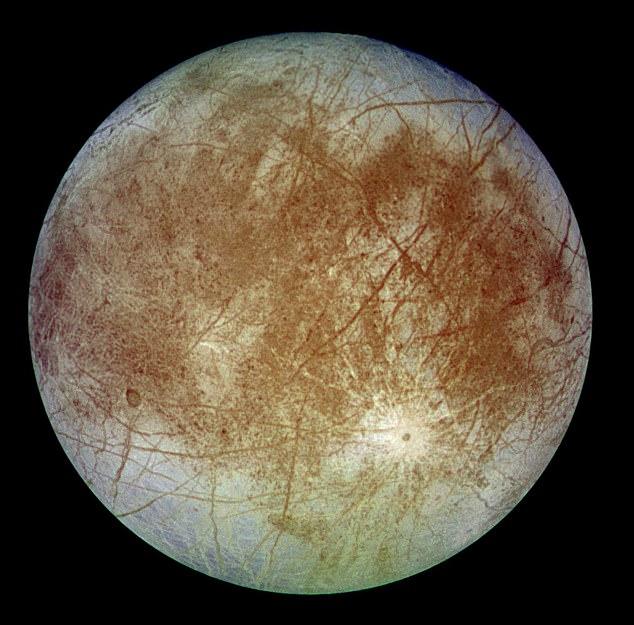 """英国科学家""""几乎肯定"""":木星卫星海洋中生活着章鱼般的外星生物"""