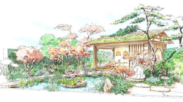 茶事美学 许一方小院,温暖细碎的生活