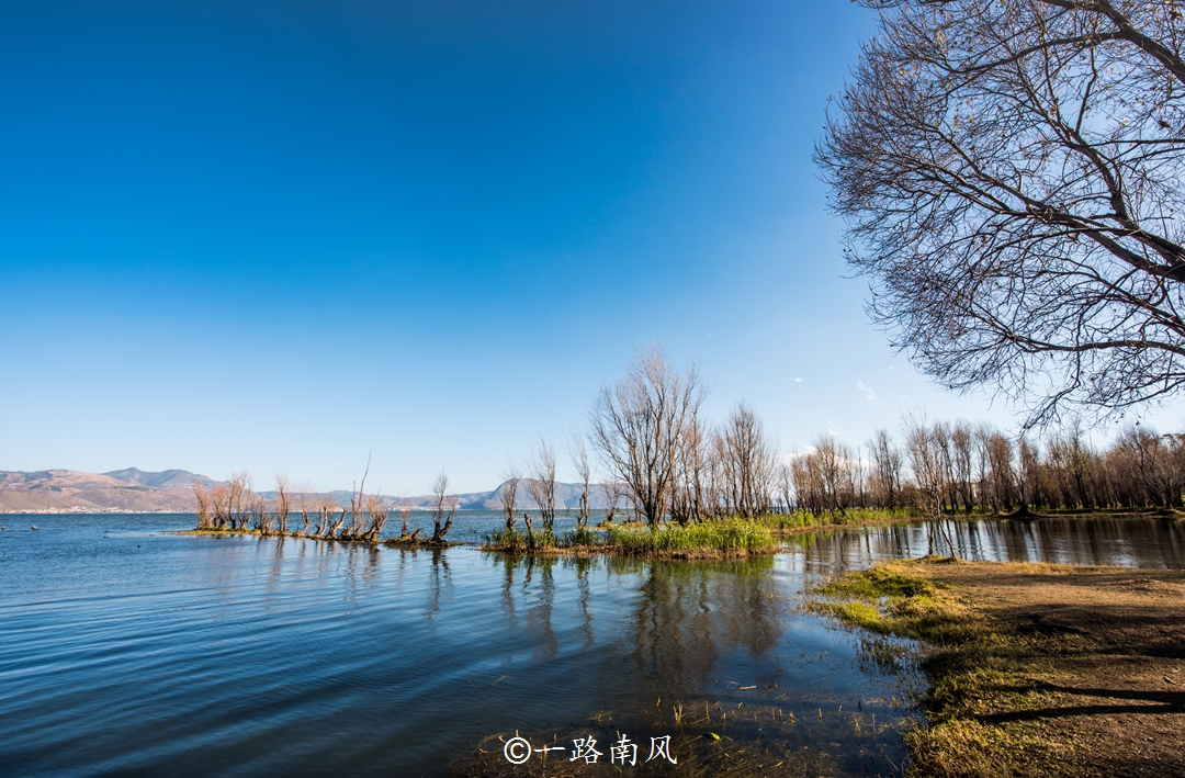 """原创            云南洱海最美的半岛,""""海上森林""""好梦幻,看一眼就爱上!"""