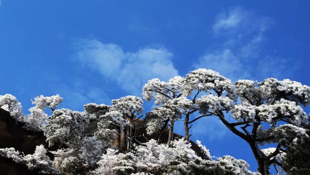 三清山一年四季风景特色