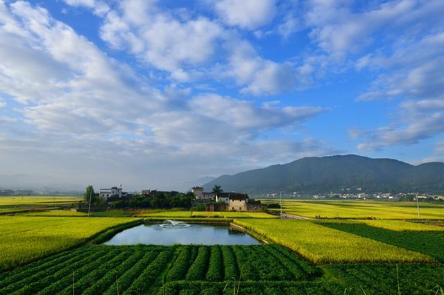 原创            祖先来自中华大地的六大强国,个个强悍无比,有一个还成超级大国