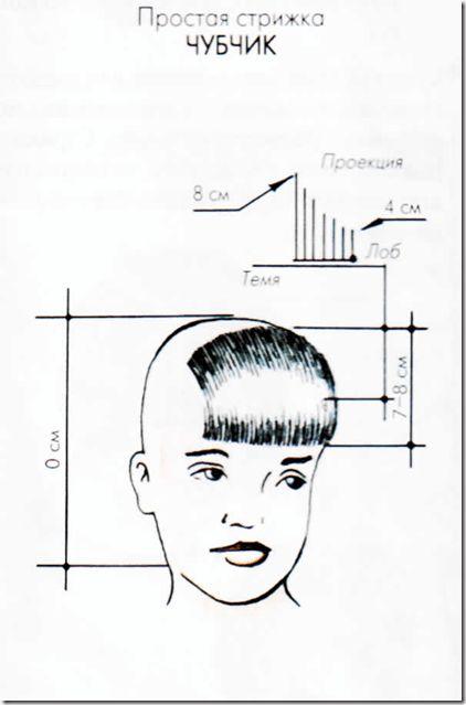 标准的chubchik发型