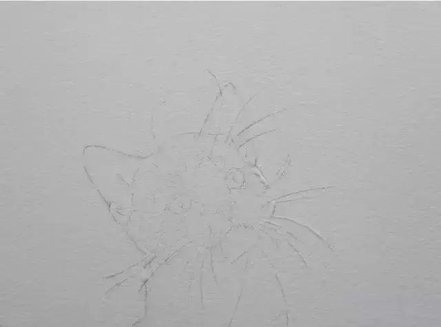超详细水彩教程,一步一步教你学会画水彩喵咪