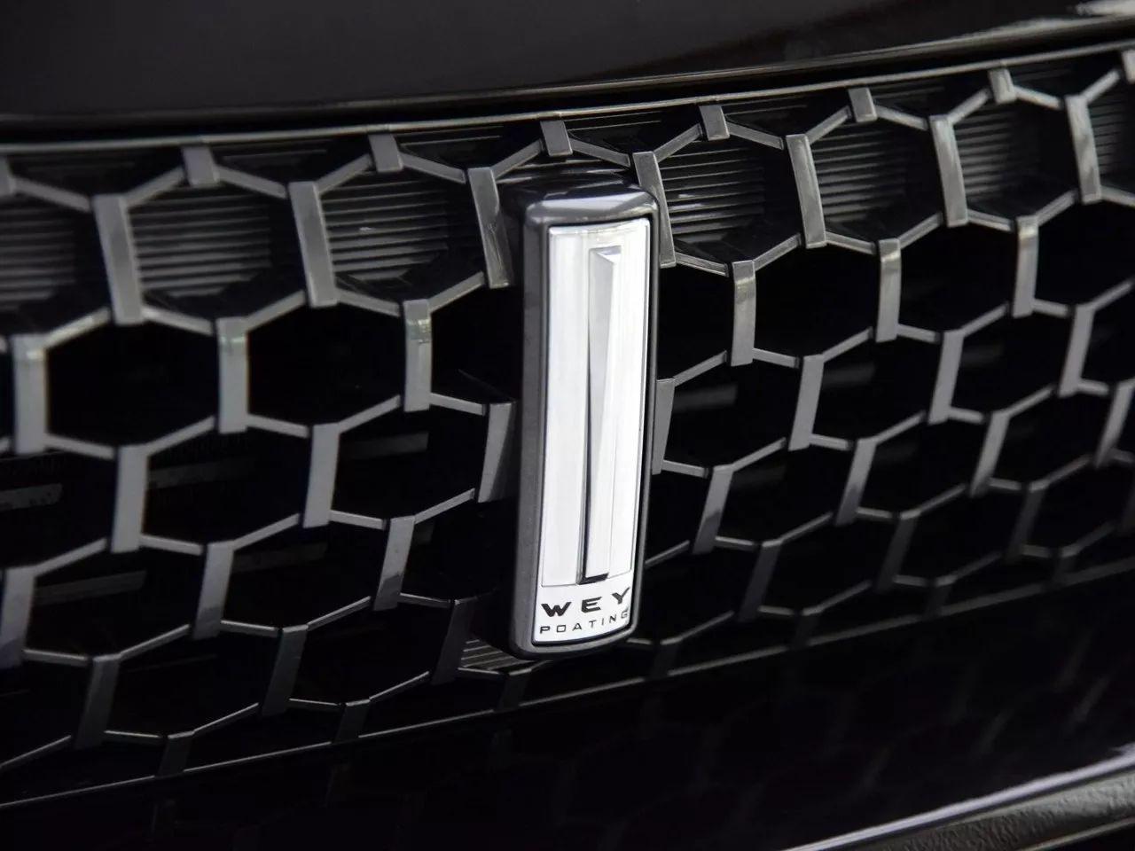 宅家看车新姿势  WEY品牌打造七大暖心购车新体验
