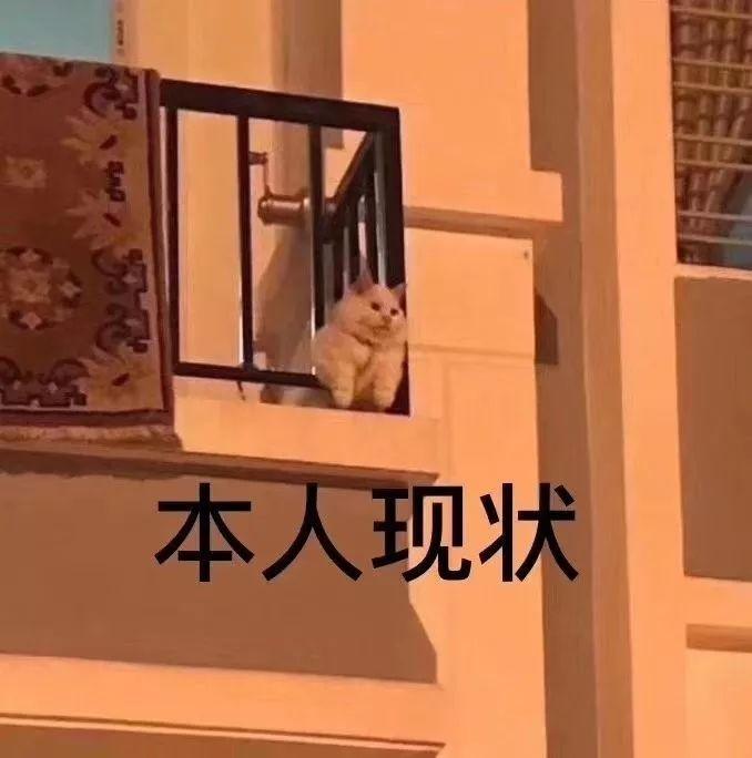 超好逛的60个广州&周边打卡点!异地恋结束后,我一定要带你来!