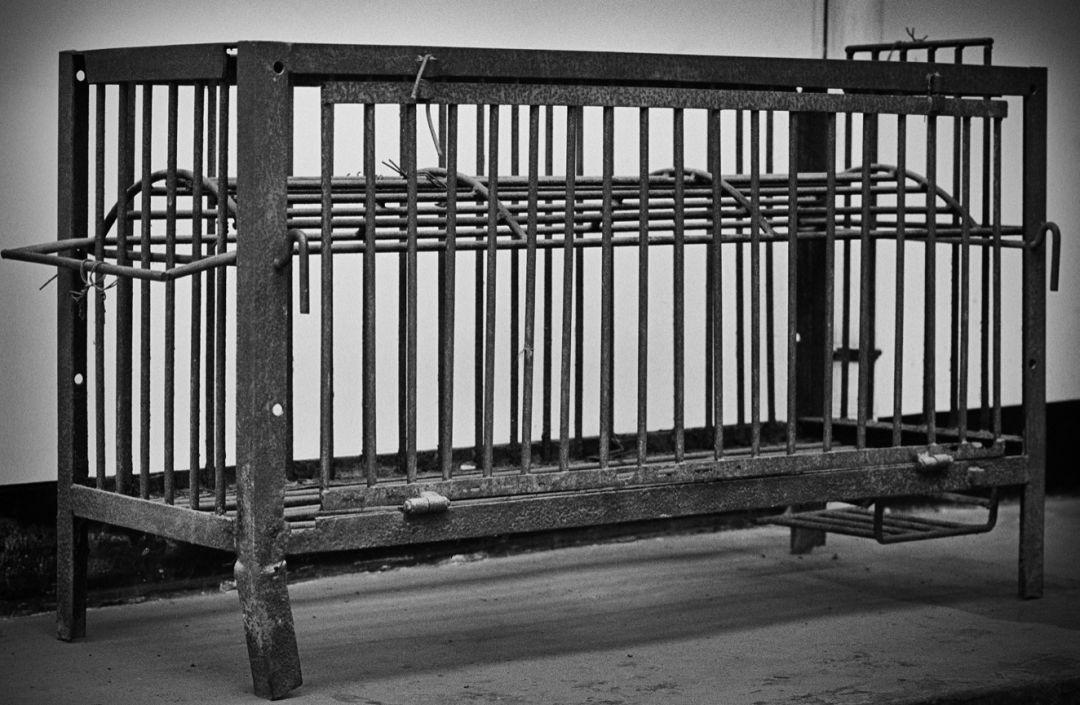 孟晚舟被引渡至美国的可能性有多大?