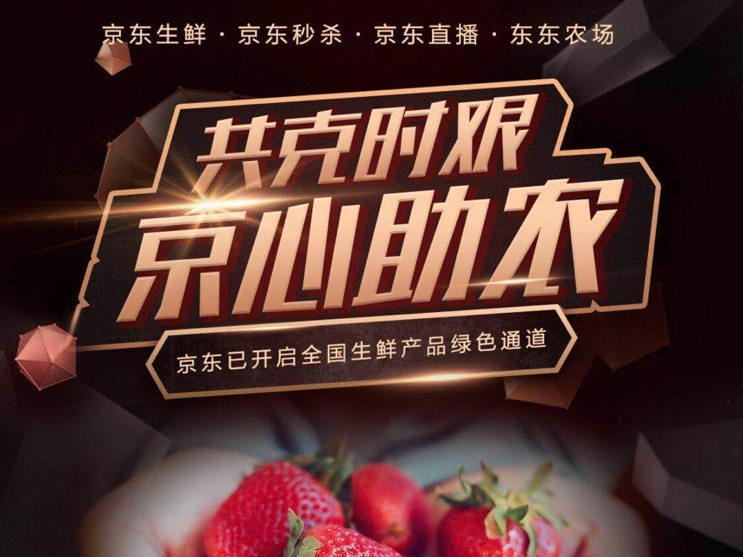 丹东滞销草莓销售突破130万元!