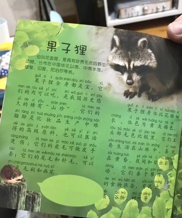 """""""果子狸肉可吃""""儿童读物陷争议:孩子选择书籍需避开5种坑"""