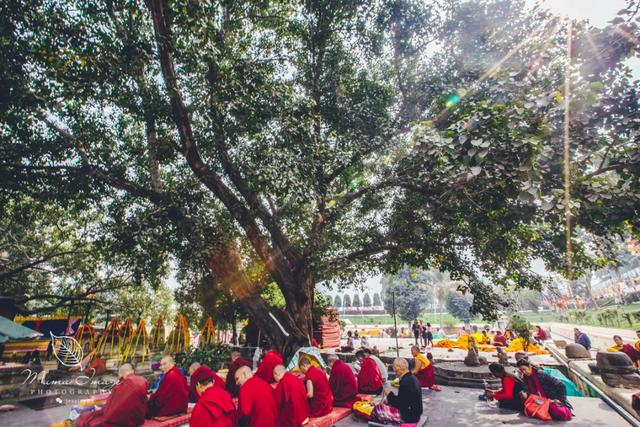 菩提迦耶摩诃菩提寺,佛教四大圣地之一