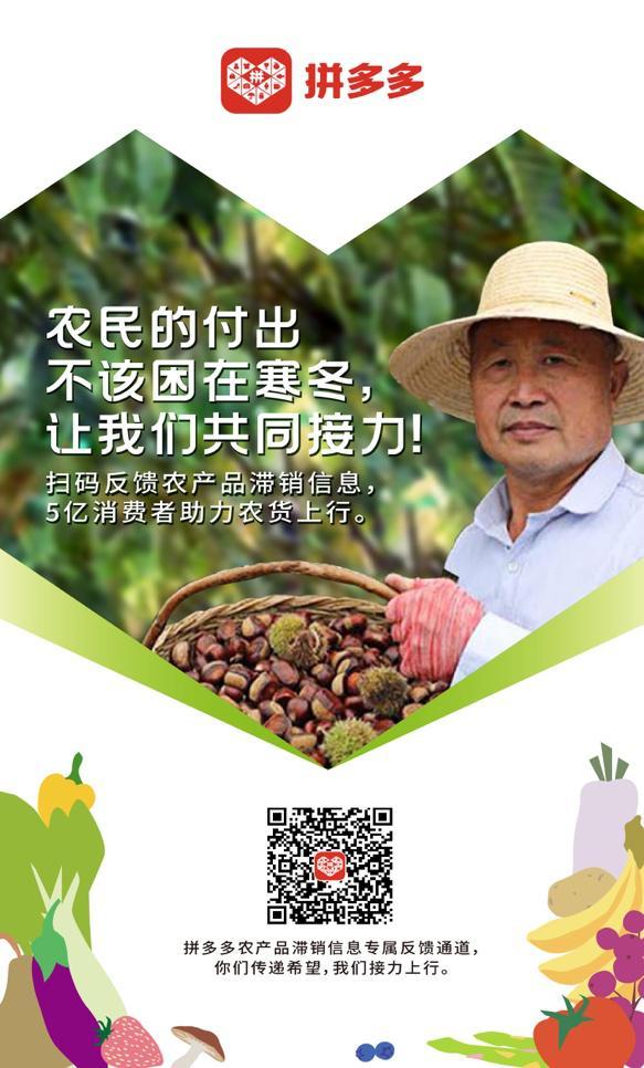 全网征集农产品滞销信息,拼多多协助农户对接5亿消费者