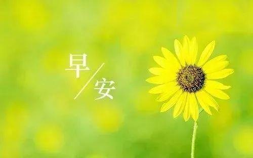 新闻来了| 潞州区红十字会接收社会捐赠最新公示!