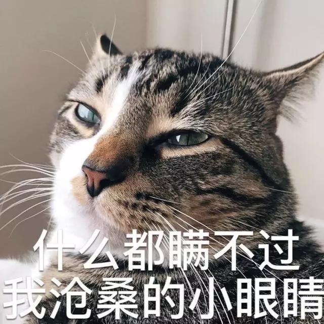 美过林志玲,被雪藏后淡出娱乐圈,如今42岁美貌不输20岁妹子!