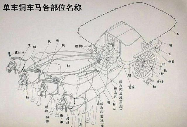铜马车各部位名称返回搜狐,查看更多